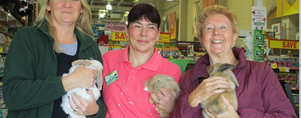 Wildlife Pictures From Bognor Regis To South Africa Are: Store's Customers Help Rescue Animals